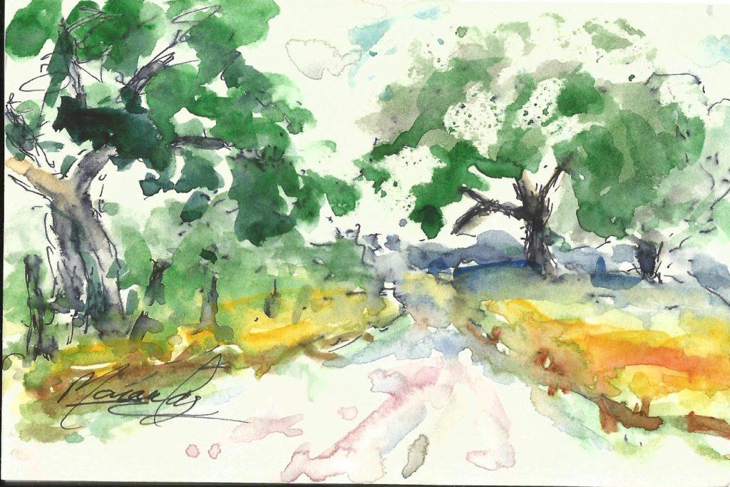 A Ingram Live Oaks (002)